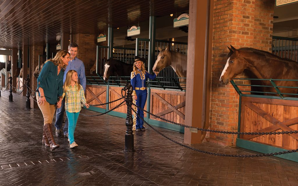 Horse_Walk_Dolly_s_Stampede_Things_to_do_in_Branson_MO